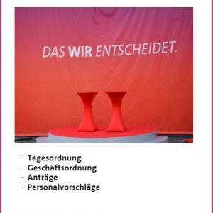Antragsbuch zum Bezirksparteitag 2013